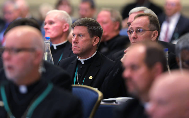 <p>U.S. Catholic bishops attend a Nov. 11, 2019, session during the fall general assembly of the U.S. Conference of Catholic Bishops in Baltimore. The bishops&rsquo; 2021 spring assembly June 16-18 will take place virtually due to concerns about the coronavirus pandemic. (CNS photo by Bob Roller)  </p>