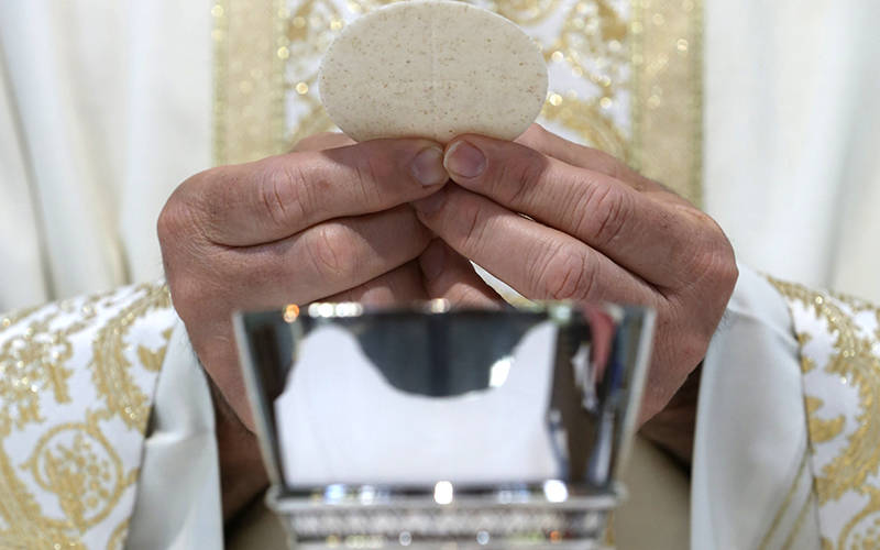 <p>A priest holds the Eucharist in this illustration. (CNS photo by Bob Roller)  </p>