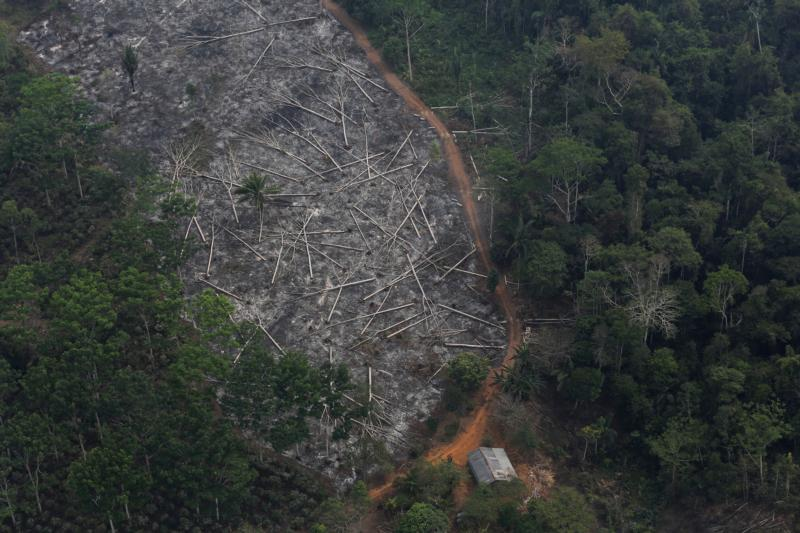 This is an aerial view of a deforested plot of the Amazon at the Bom Futuro National Forest in Porto Velho, Brazil, Sept. 3, 2015. (CNS photo by Nacho Doce/Reuters)
