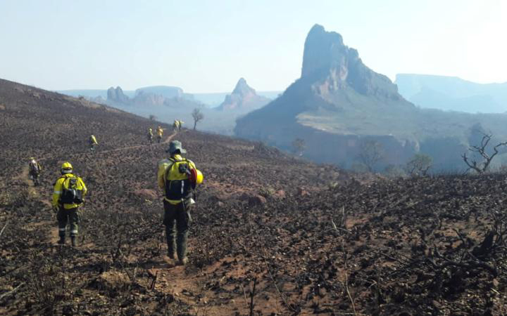 Firefighters near Robore, Bolivia, walk where wildfires have destroyed the forest Aug. 19, 2019. (CNS photo by Department of Santa Cruz via Reuters)