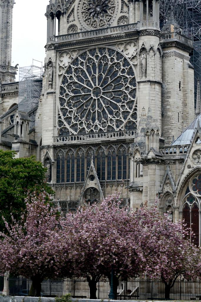 Rosette windows of Notre Dame Cathedral are seen April 16.(CNS photo by Paul Haring)