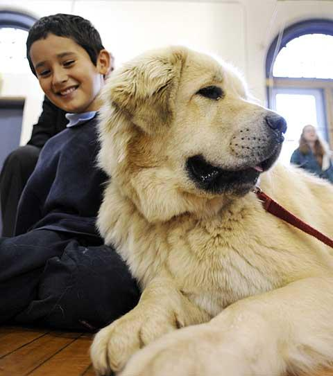 Aiden Aguirre sits with his dog, Temba.