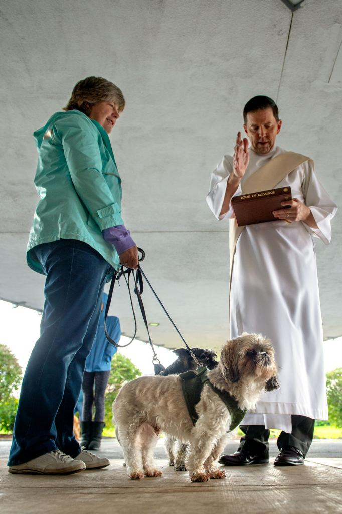 Maurine Beattie brings her dogs, Yodi and Shiza, to Deacon Ed Knauf for a blessing during an Oct. 6 Blessing of the Animals at St. John the Evangelist Church in Greece.