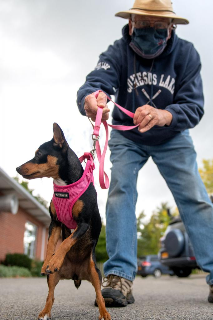 Dwight Folts holds the leash on his dog, Nellie, before the pet blessing at St. Mary Church in Geneseo Oct. 2.