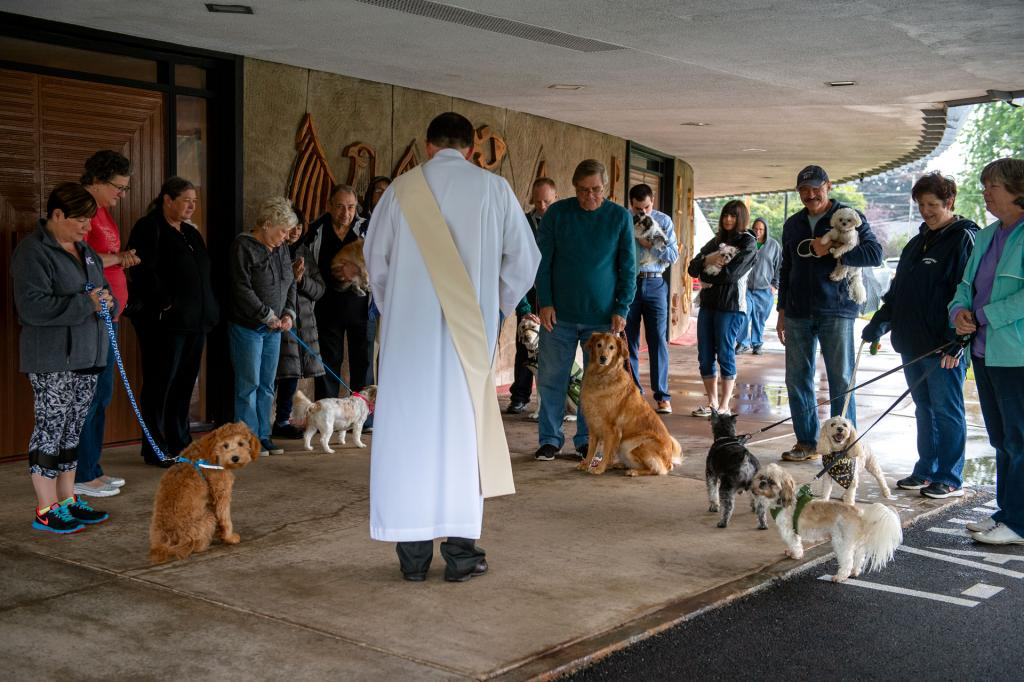 Deacon Ed Knauf officiates the animal blessing service.