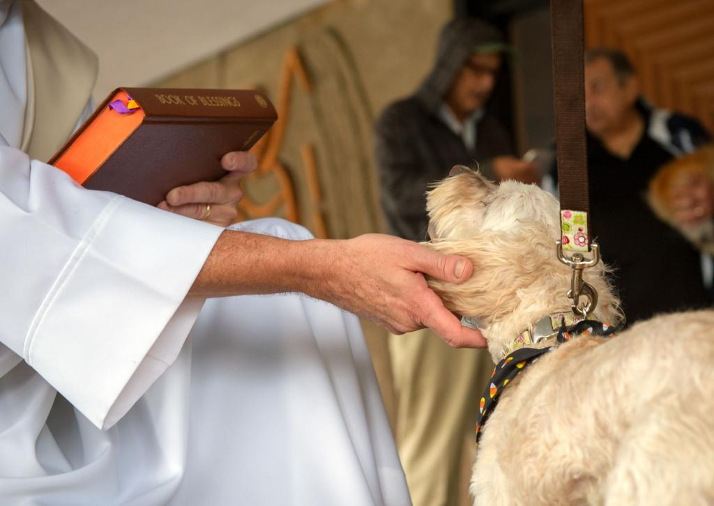 Patty Hoag's dog, Maggie, is blessed by Deacon Ed Knauf.