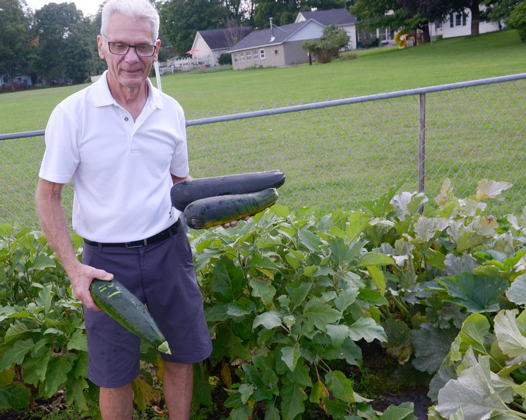 Ray Woerner works in the Giving Garden at St. Patrick Church in Victor Aug 29. (Courier Photo by John Haeger)