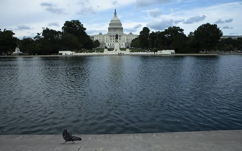 <p>The U.S. Capitol is seen in Washington June 13, 2021. (CNS photo by Tyler Orsburn)  </p>