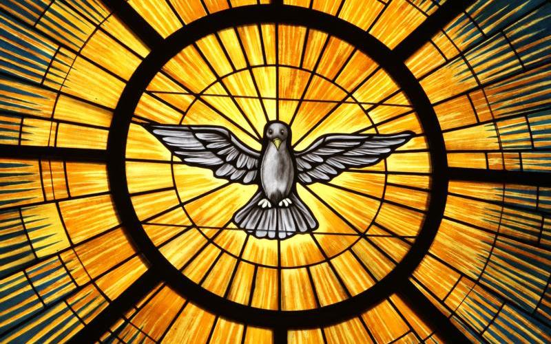 The Holy Spirit, traditionally depicted as a dove, is pictured in a stained-glass window at St. John Vianney Church in Lithia Springs, Ga. (CNS photo by Michael Alexander/Georgia Bulletin)
