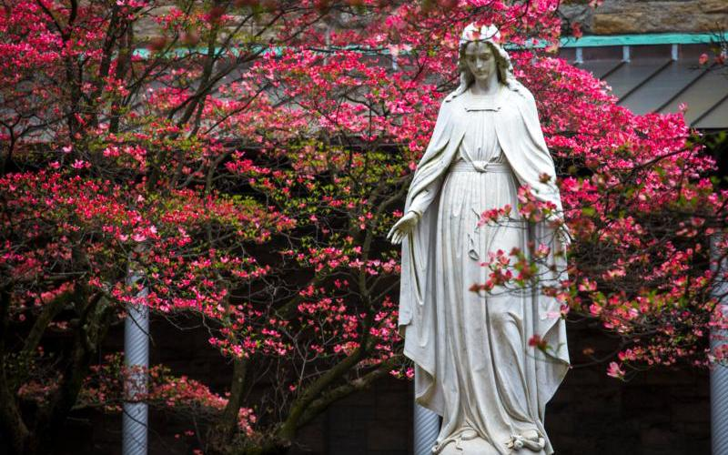 A statue of Mary is visible among the vivid spring buddings May 1, 2019, at St. Joseph's Seminary in Yonkers, N.Y. (CNS photo by Chaz Muth)