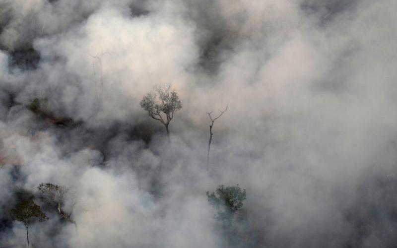 Smoke near Porto Velho, Brazil, billows during a fire in the Amazon rainforest Aug. 21, 2019. (CNS photo by Ueslei Marcelino/Reuters)