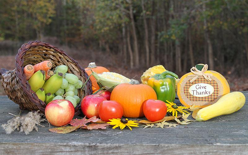 Thanksgiving Day celebrates an abundant harvest and the blessing of family and friends.