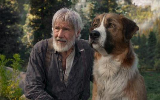 """Harrison Ford and a dog named Buck appear in the movie """"The Call of the Wild."""