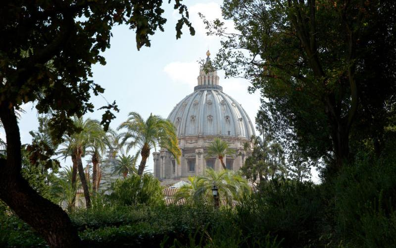 The dome of St. Peter's Basilica is seen through trees in the Vatican Gardens Oct. 3, 2017.