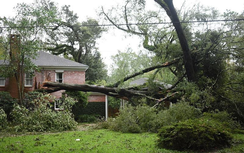 A home in Mobile, Ala., is seen damaged by Hurricane Sally Sept. 16, 2020.