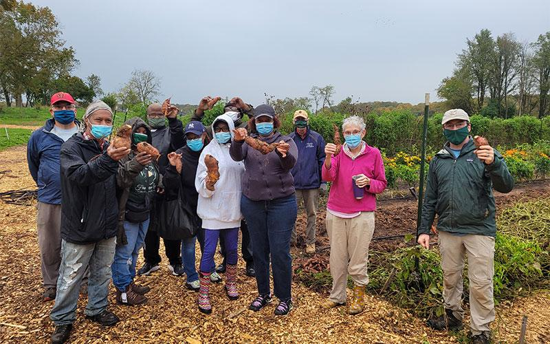 Volunteers work to harvest fresh, organic produce on Little Portion Farm outside of Baltimore.