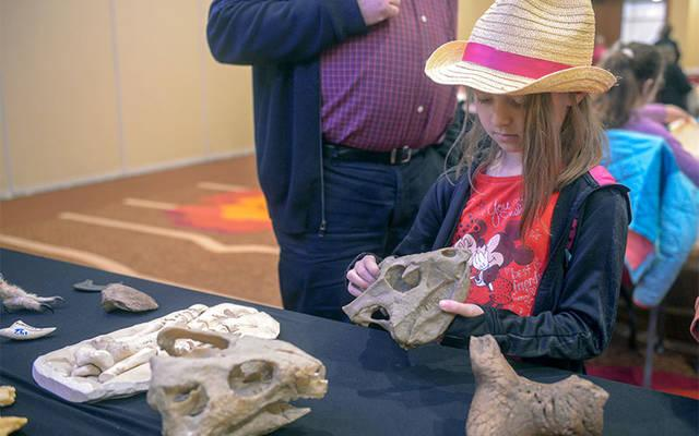 <p>Claire Blanchard of New York City examines some dinosaur fossils March 30 before a presentation by Catholic paleontologist Peter Dodson at Auburn's Hilton Garden Inn. (Courier photo by John Haeger)    </p>