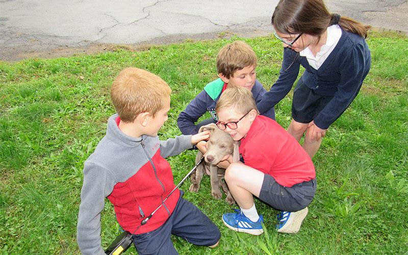 Classmates Tommy Conlon, Andrew Schlueter and Ava Bellanca give Sawyer Damon's Puppy some love.