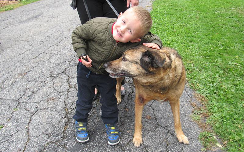 Pet Blessing Held At St Agnes School Catholic Courier