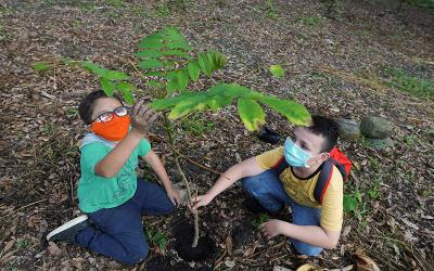 <p>Young Colombian environmentalist Francisco, founder of the &ldquo;Guardians of Life&rdquo; environmental group, plants a tree in Villeta April 21, 2021, with a fellow activist to mark Earth Day. Earth Day, observed April 22 every year, marks the anniversary of the birth of the modern environmental movement in 1970. (CNS photo by Nathalia Angarita/Reuters)  </p>