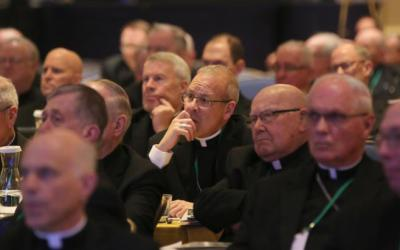 Bishops listen to a speaker at the fall general assembly of the U.S. Conference of Catholic Bishops in Baltimore Nov. 14, 2018. (CNS photo by Bob Roller)