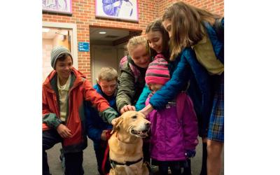 Students greet Bo, the therapy dog, Jan. 10 at St. James/Seton School in Omaha. As a therapy dog, he brings joy and stress relief to students every Wednesday. (CNS photo by Mike May/Catholic Voice)