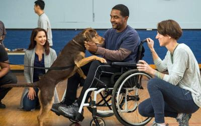 """Ashley Judd, Shelby the dog, Rolando Boyce and Annie Nelson star in a scene from the movie """"A Dog's Way Home.""""  (CNS photo by Sony Pictures)"""