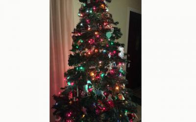 <p>Gina's Christmas tree (Courier photo by Gina Capellazzi) </p>